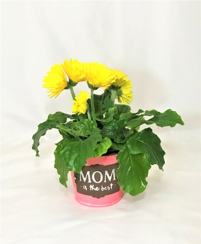 Best Mom Ever Planter