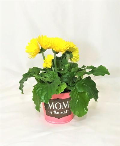 Best Mom Ever Planter