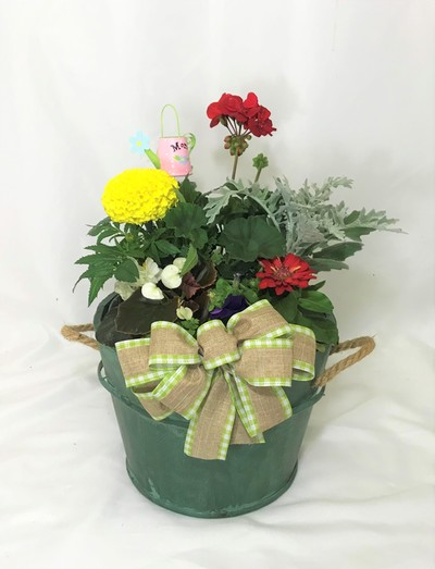 Rustic Wooden Pot - Green
