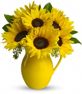 Teleflora's Sunny Day Pitcher of Sunflowers - Standard