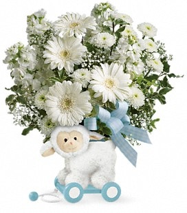 Teleflora's Sweet Little Lamb - Baby Boy - Deluxe