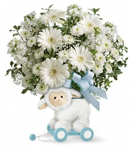 Teleflora's Sweet Little Lamb - Baby Boy - Premium