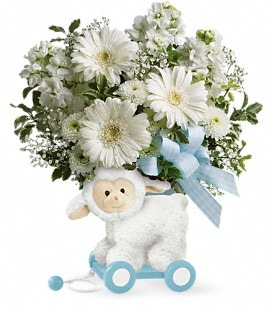 Teleflora's Sweet Little Lamb - Baby Boy - Standard