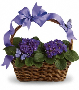 Violets and Butterflies Basket