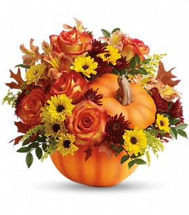 Teleflora's Warm Fall Wishes -Premium
