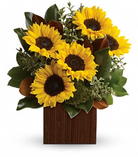 You're Golden Bouquet by Teleflora - Standard